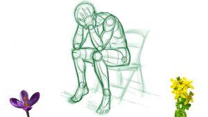 Depressionen mit Heilpflanzen lindern -  eine kritische Betrachtung