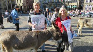 Esel auf dem Bremer Marktplatz