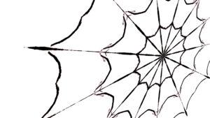Dem Spinnennetz zur Ehre
