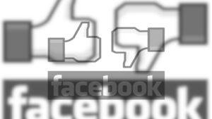Facebook, Fluch oder Segen